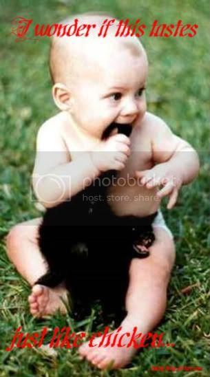 funny picture of baby biting a cat's leg